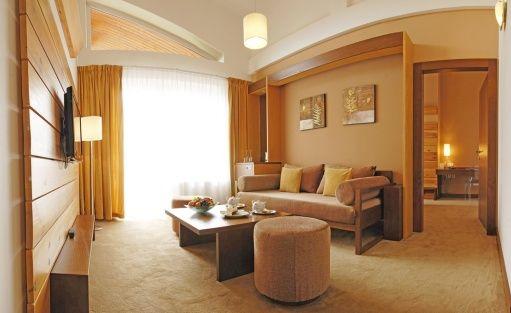 Hotel **** HOTEL PARTIZÁN**** Congress & Wellness resort - Slovakia / 27