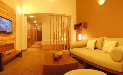 Hotel **** HOTEL PARTIZÁN**** Congress & Wellness resort - Slovakia / 35