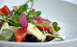 Dworek New Restaurant Restauracja / 0