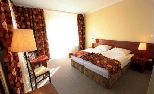 Hotel *** Hotel Srebrna Góra / 9