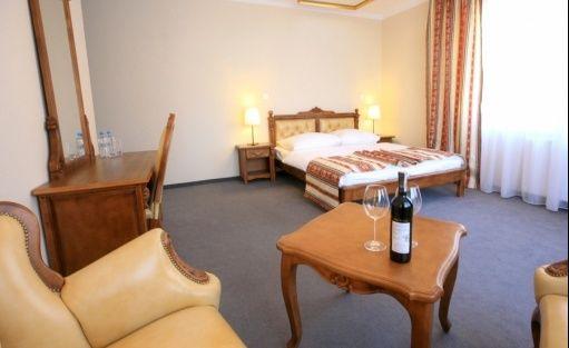 Hotel *** Hotel Srebrna Góra / 7