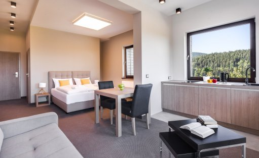 Hotel SPA Czarny Kamień Resort & SPA / 12