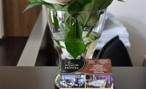 Hotel *** Aviator Hotel / 7