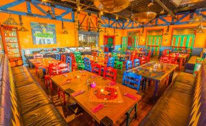 Restauracja Blue Cactus  Restauracja / 11
