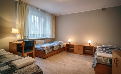 Hotel ** Hotel Dom Polonii  / 28