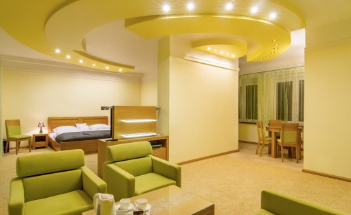 Hotel **** Hotel Pory Roku / 6