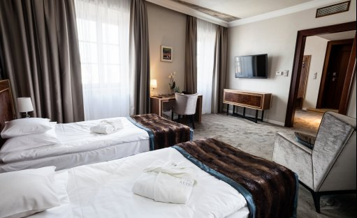 Hotel ***** Hotel Alter / 18
