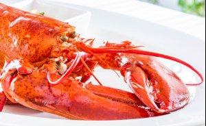 Restauracja Villa Bianco Steak & Lobster House Restauracja / 1