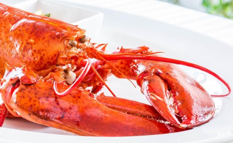 Restauracja Restauracja Villa Bianco Steak & Lobster House / 14