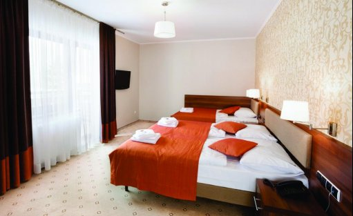 Hotel *** Hotel ARTUS*** Prestige SPA Karpacz / 6