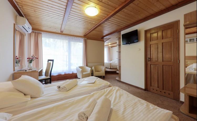 Hotel ** Hotel Łaziska / 18