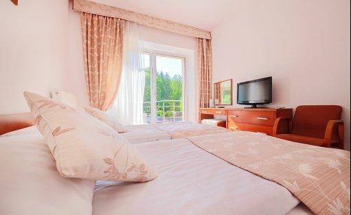 Hotel ** Hotel Łaziska / 9