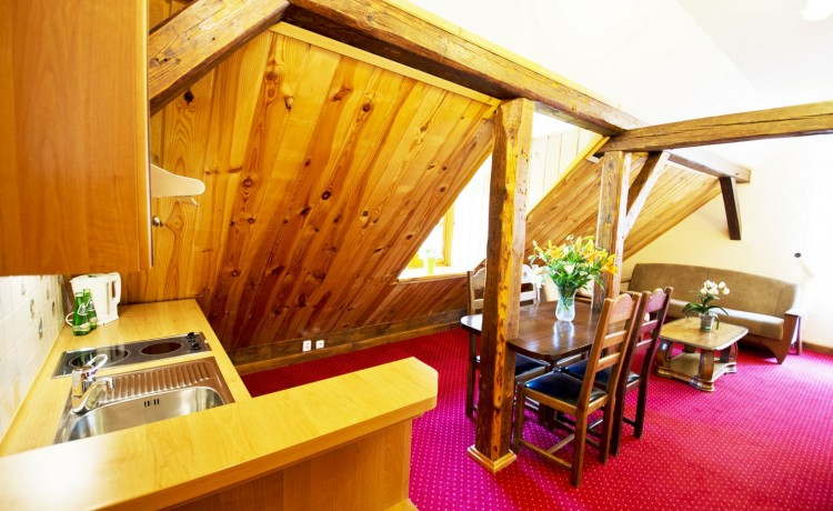 Hotel *** Dworek Wapionka  / 24
