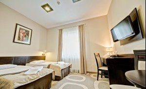 Hotel Picaro***Stok Hotel *** / 0