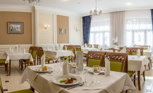 Hotel **** Hotel Buczyński Medical & Spa / 25