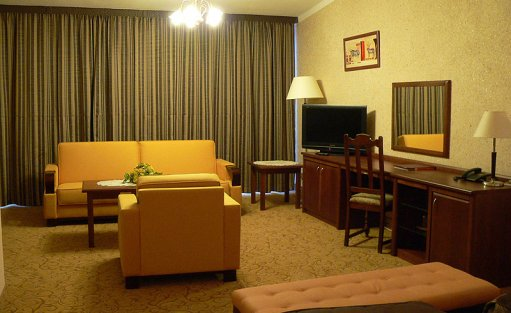 Hotel **** Hotel Starzyński / 8