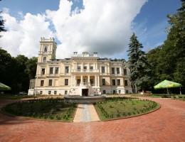 Zamek Biedrusko