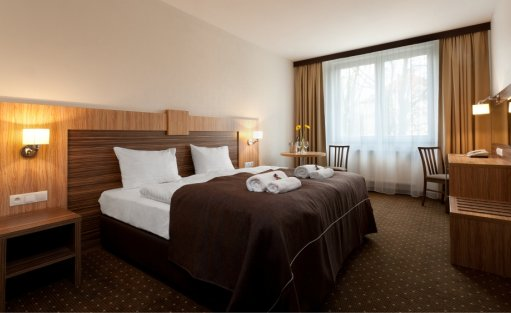 Hotel *** Hotel Milenium / 16