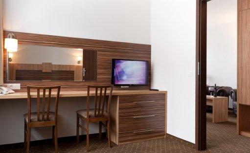 Hotel *** Hotel Milenium / 24