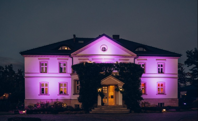 Pałac Pałac Lenartowice / 2