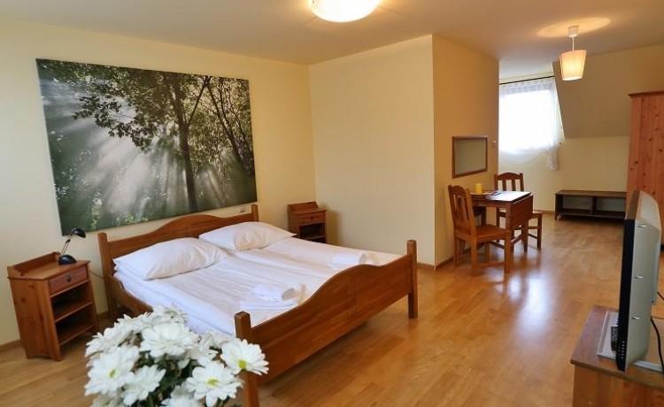 Hotel *** Centrum Konferencyjno-Wypoczynkowe Hotel *** Vesta / 9