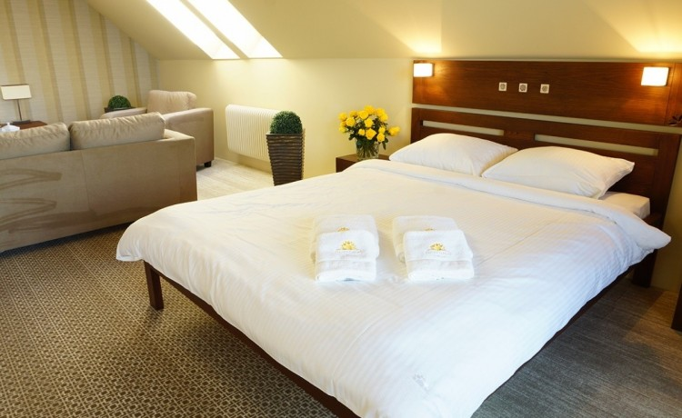 Hotel SPA Złoty Groń Resort & Spa / 16
