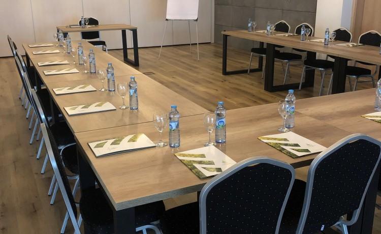 Obiekt konferencyjny NATURAL HOTEL ECO&CONFERENCE Konferencje w rozsądnej cenie / 8