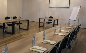 NATURAL HOTEL ART&ECO Konferencje w rozsądnej cenie Obiekt konferencyjny / 4